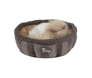 SCRUFFS AristoCat Tramps Ring Bed