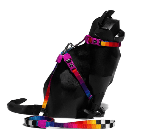 ZEE.CAT Prisma Harness & Leash Set - My Cat and Co.