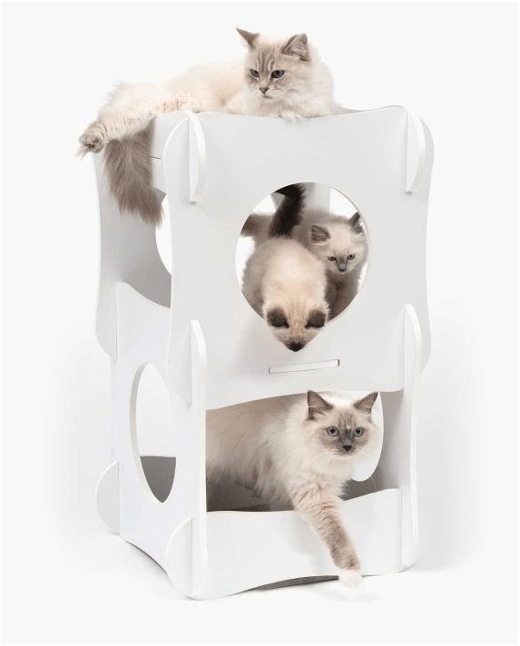 Premium Cat Furniture Condo White - My Cat and Co.