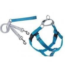 Freedom No-Pull Harness and Leash Turquoise - My Pooch and Co.