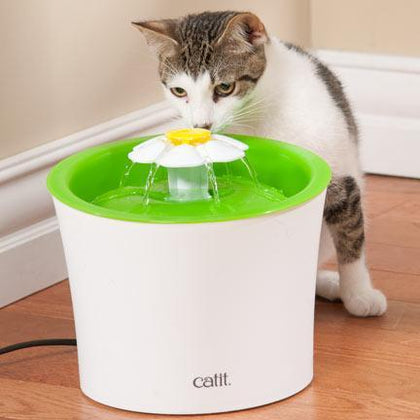 Senses 2.0 Flower Fountain - My Cat and Co.