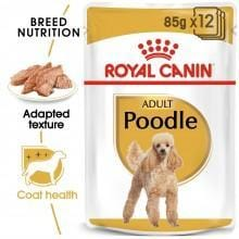 ROYAL CANIN Adult Poodle (12x85g) - My Pooch and Co.