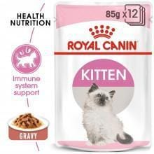Royal Canin Kitten Wet Food in Gravy - My Cat and Co.