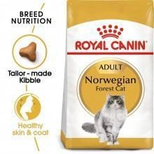 ROYAL CANIN Norwegian Forest Cat 2kg - My Cat and Co.