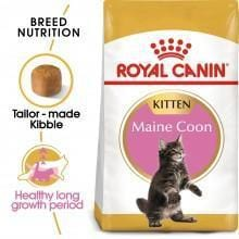 ROYAL CANIN Kitten Maine Coon 2kg - My Cat and Co.