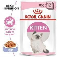 Royal Canin Kitten Instinctive Wet Food in Jelly - My Cat and Co.