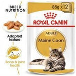 ROYAL CANIN Adult Maine Coon Wet Food - My Cat and Co.
