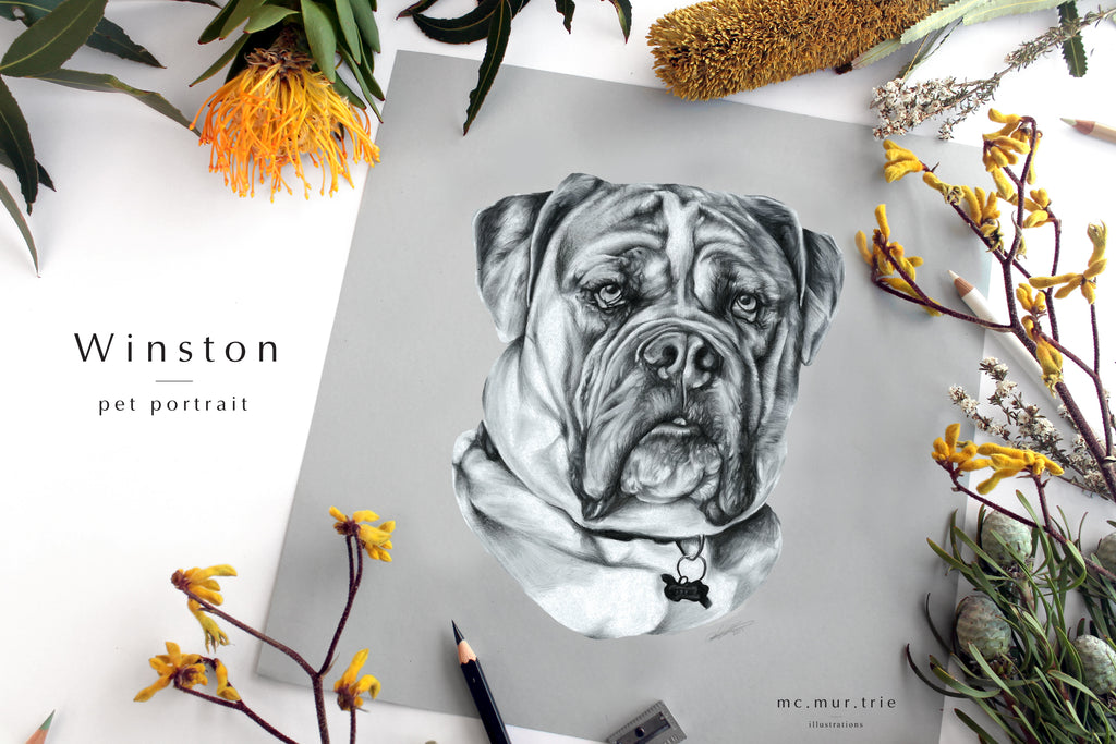 Hand drawn, personalised custom pet portrait. Perfect for a custom gift for birthdays or Christmas presents.