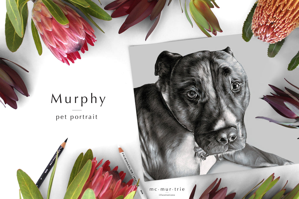 Hand drawn, personalised custom pet portrait. Perfect for a personalised gift for birthdays or Christmas presents.