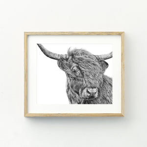 Harry the Highland Cow - Large Print