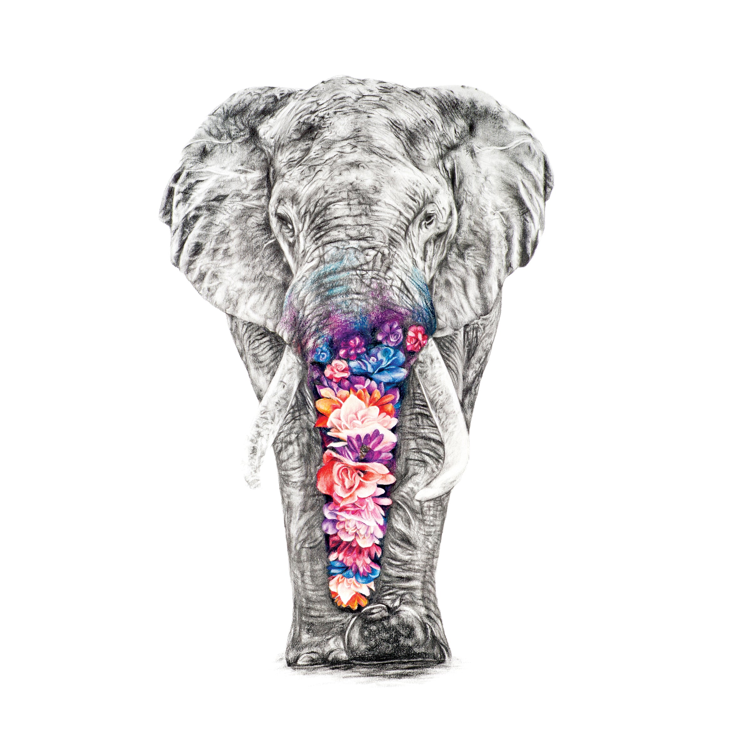Effy the Elephant - Large Print