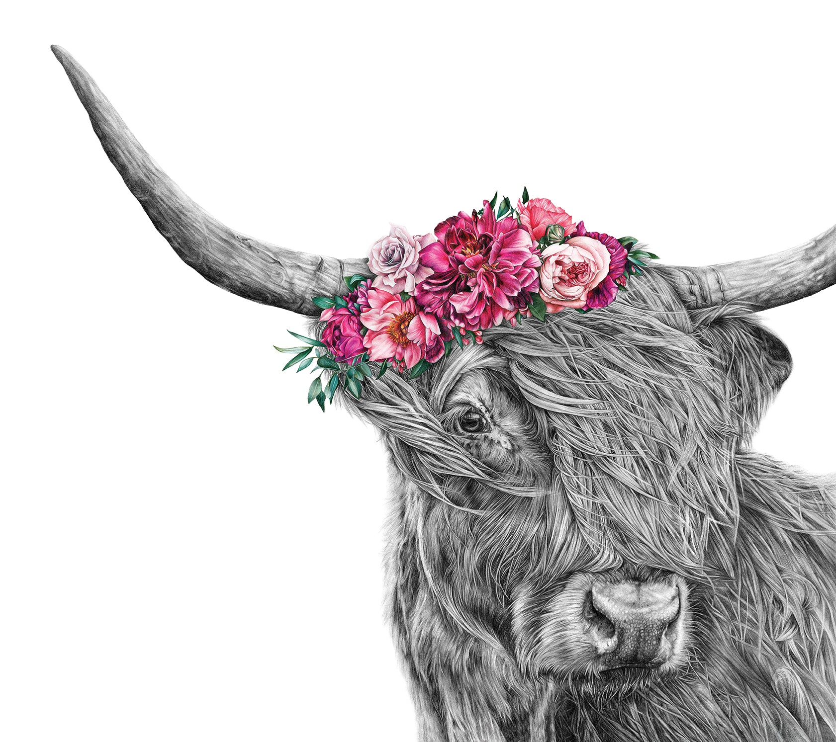Heidi the Highland Cow - A5 Print