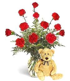 Red Carnations and Bear