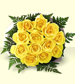 1 Dozen Favorite Yellow Roses