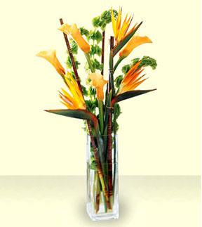 Tropicala Bouquet