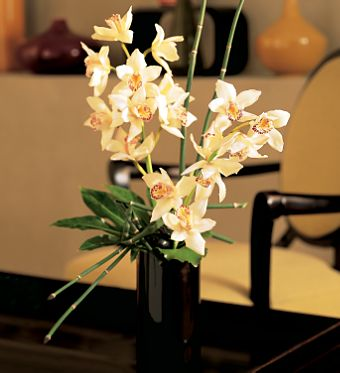 Artful Orchids