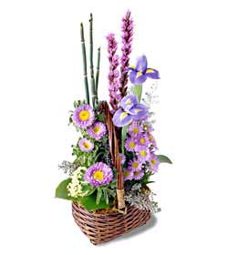 Sweet Peace Basket