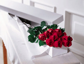 Roses Boxed