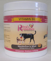 Vitamin B6 Powder for Dogs and Cats