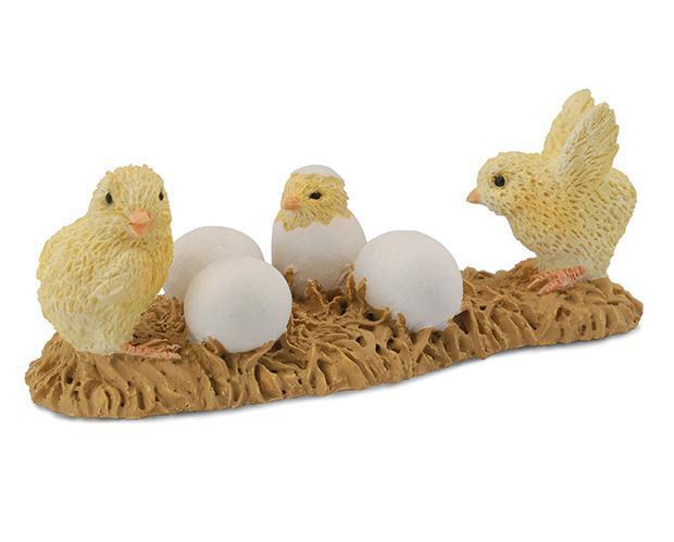 Hatching Chicks