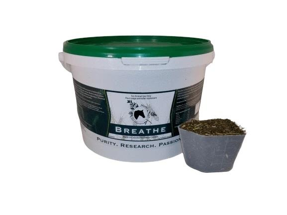 Herbs for Horses Breathe with No Garlic