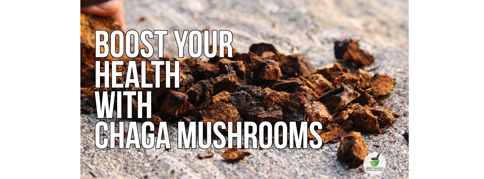 Boost Your Health With Chaga Mushrooms