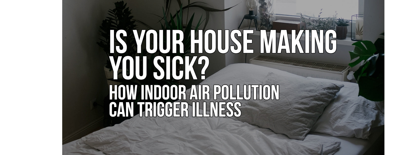 Is Your House Making You Sick? How Indoor Air Pollution Can Trigger Illness