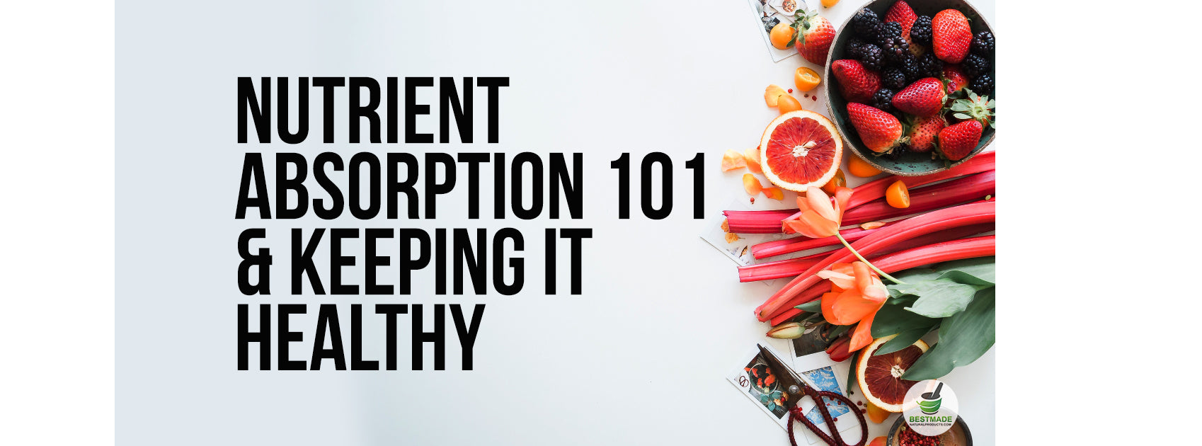 Nutrient  Absorption 101  & Keeping It Healthy