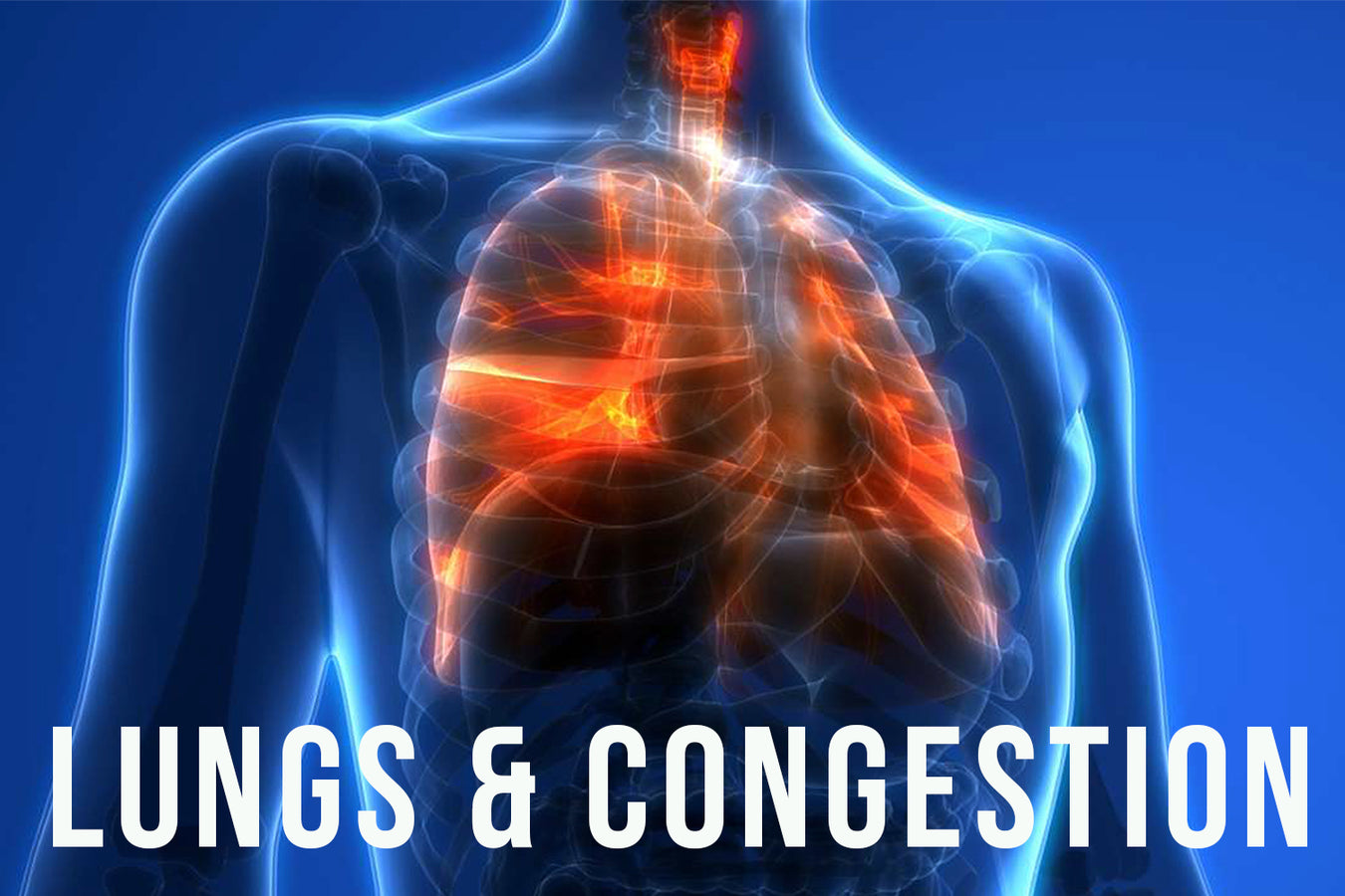 LUNGS & CONGESTION