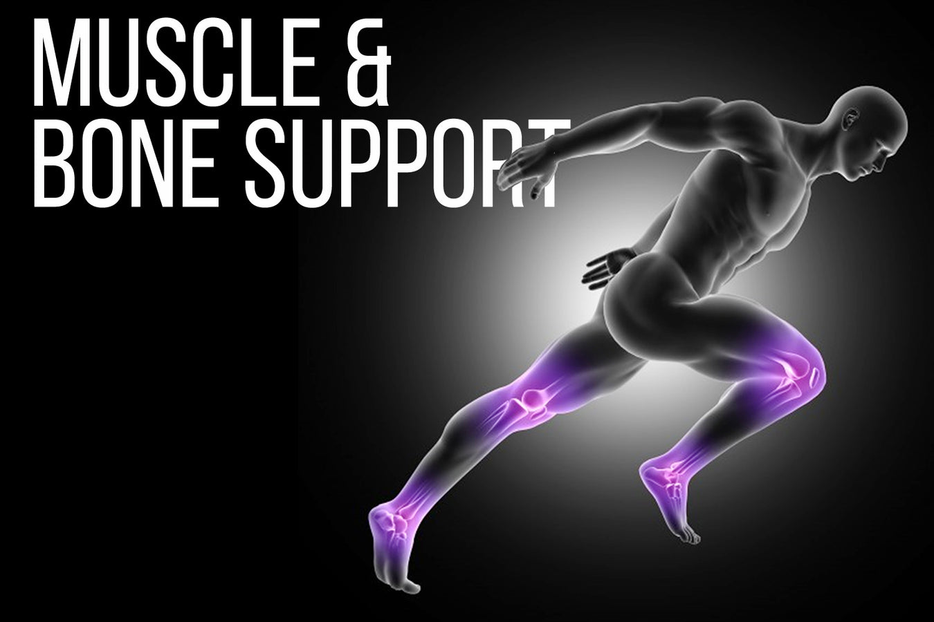 MUSCLE & BONE SUPPORT