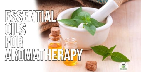 Organic Natural Supplement for Focus and Relaxation