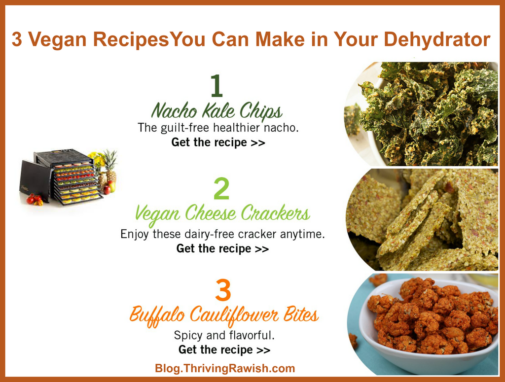 3 Vegan Snacks You Can Make in Your Excalibur Dehydrator
