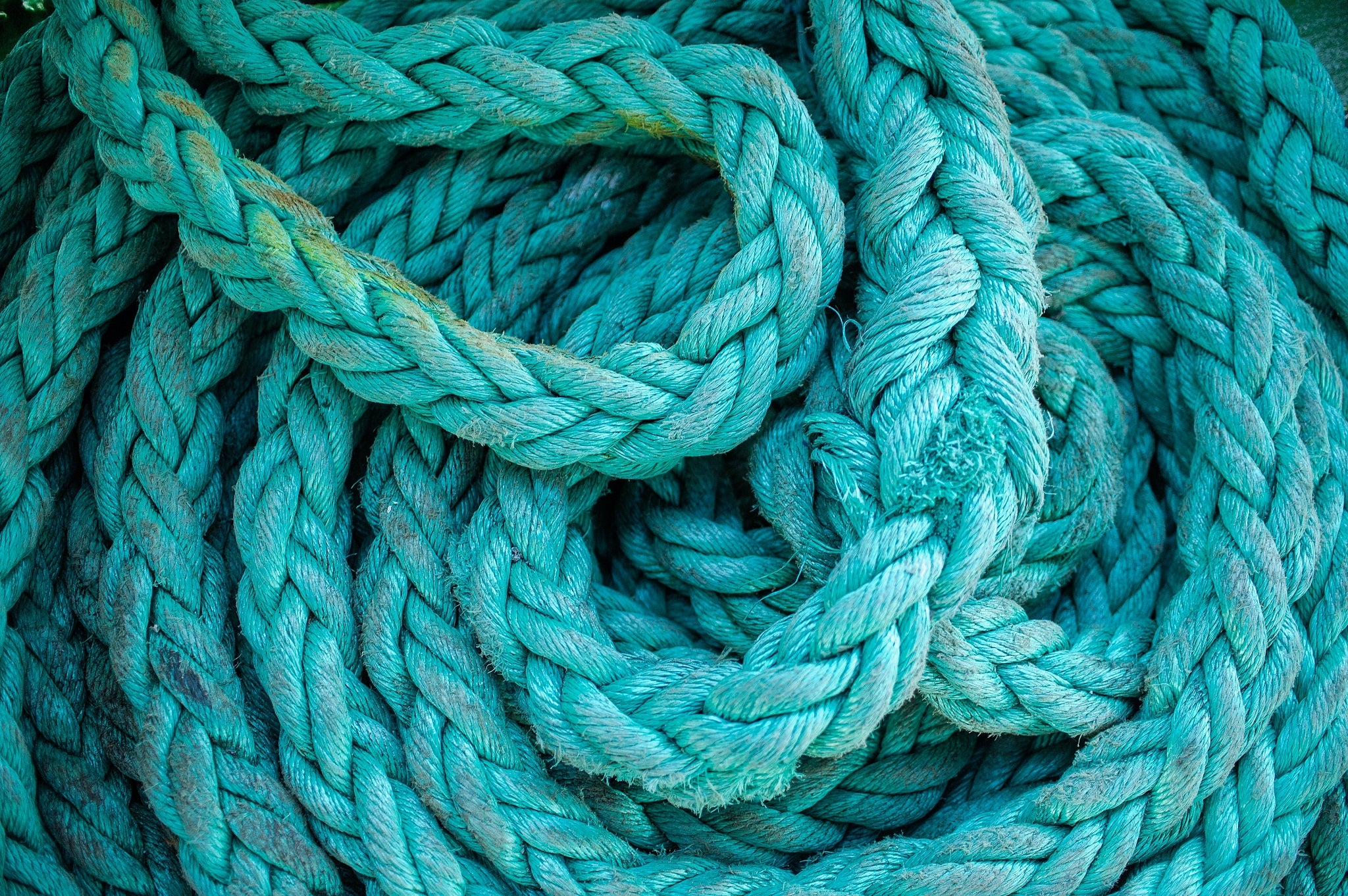 green rope in a tangle