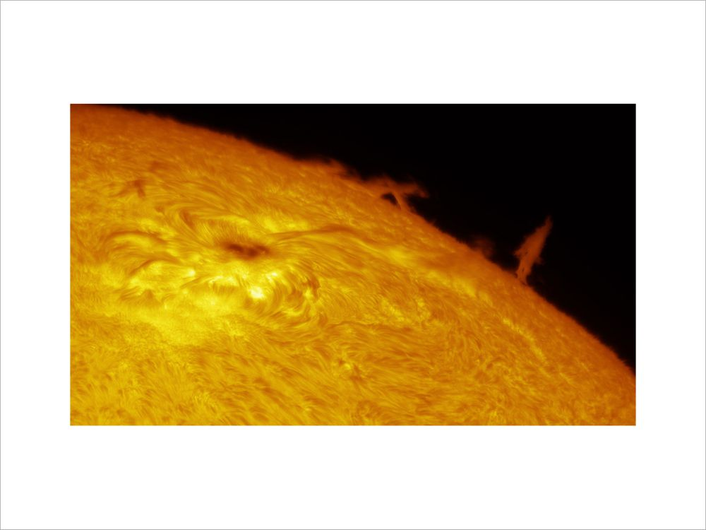 Solar Limb Prominence and Sunspot