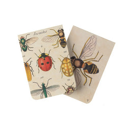 Insects Pocket Notebook Pack