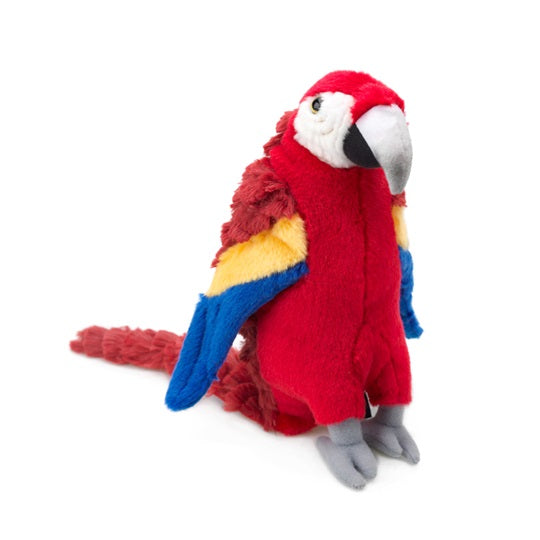Large Polly Parrot