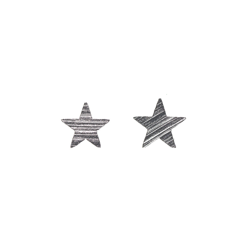 Star Brushed Silver Plated Earring