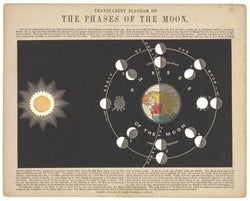 Transparent Diagram of the Phases of the Moon