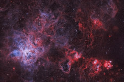 NGC 2070 - The Tarantula Nebula