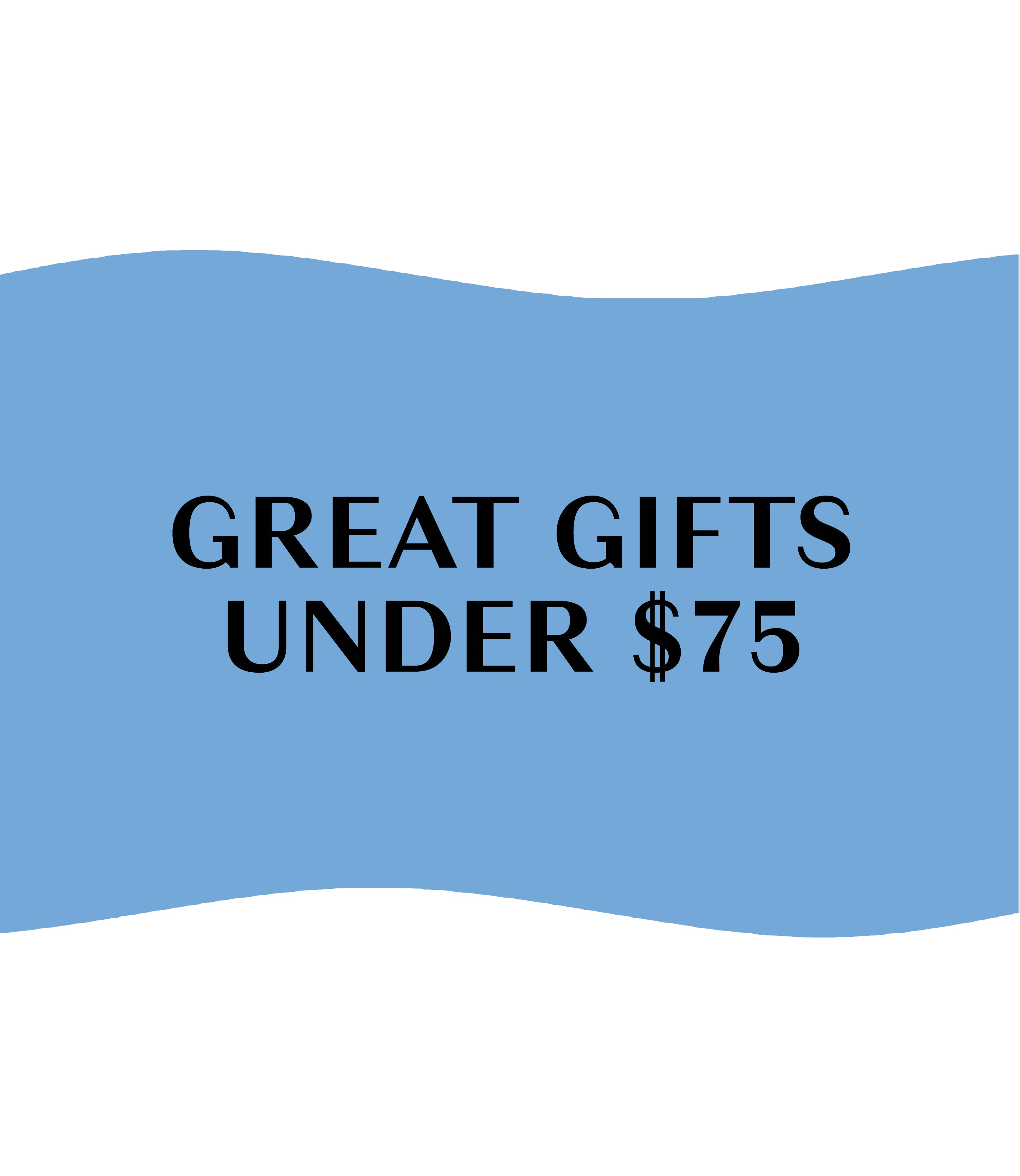 Holiday Gift Guide 2020 - Gifts Under $75 - Holiday Gift Guide 2020 - Gifts Under $75
