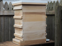 Complete Hive 4 Medium 8 frame boxes