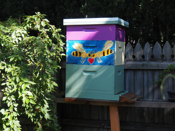 Beekeeper and Beehive Rental