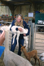 Alpaca Care and Management (Full day). Book a Date