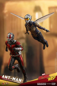 Hot Toys Ant-Man And The Wasp - Ant-Man 1/6 Preventa