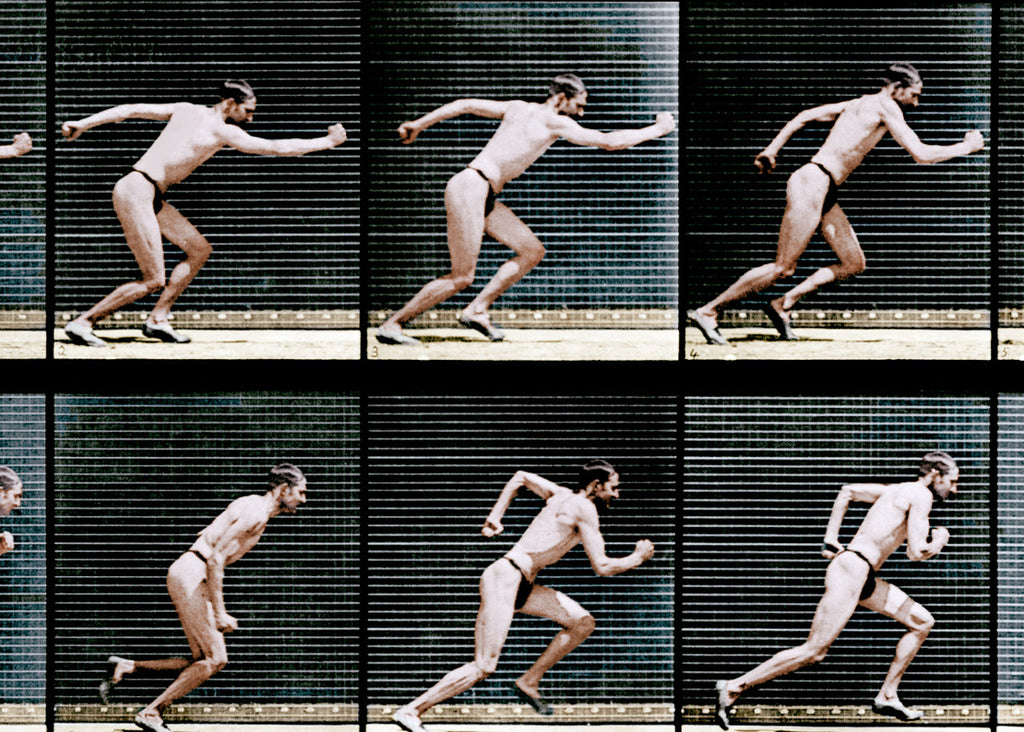 1887: A study in human locomotion by Eadweard Muybridge