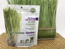 Organic Pet Wheat Grass Self-Grow Kit