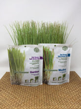 Picture of two pet grass self-grow kits standing on a wicker surface
