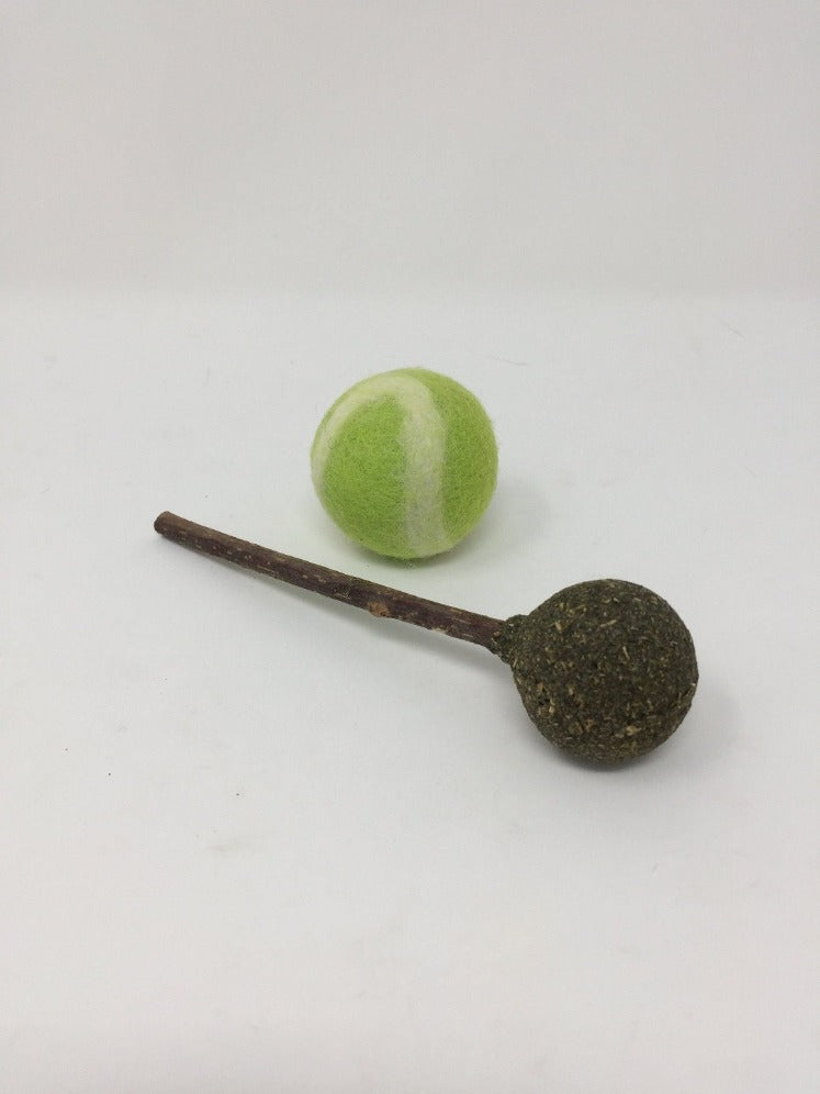 Picture of a green and white tennis ball and a brown ball on a stick for pets on a white background