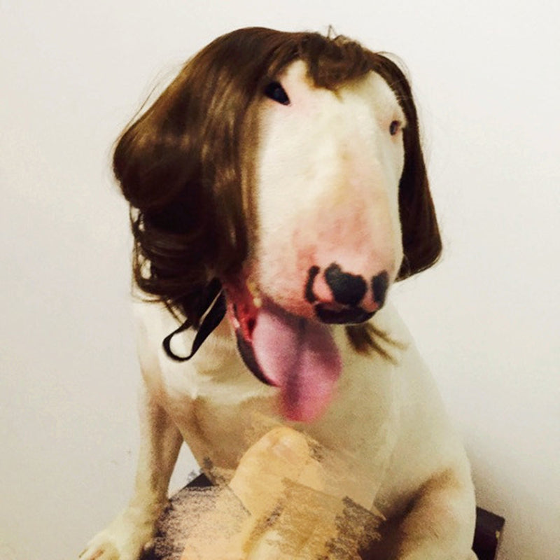 Farm Girl Pet Wig - Sick Stuff