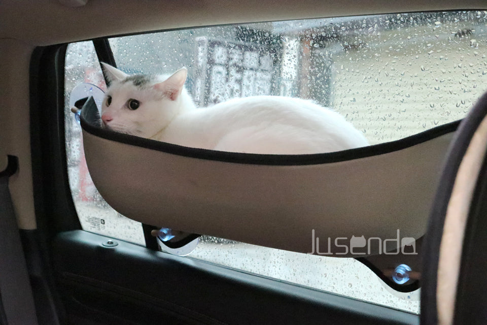 Cat Window Perch - Sick Stuff